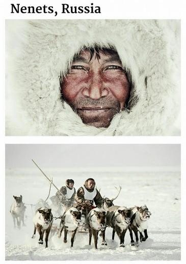 suku yang hampir punah-nenets-rusia