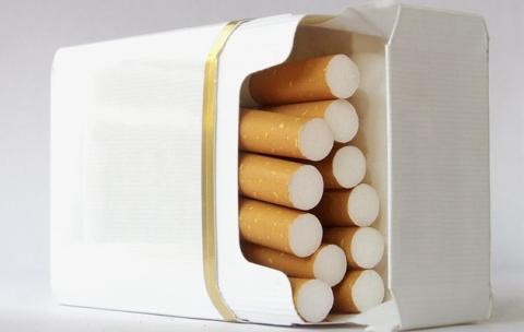 Rokok bungkus polos