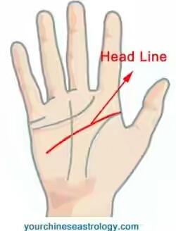 garis-tangan-head-line